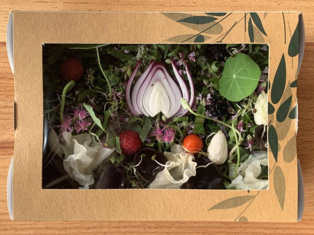 La présentation de chaque bento soba fraîches aux plantes sauvages est unique