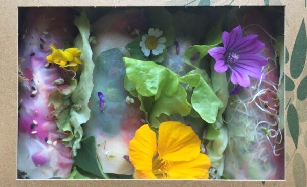Boutique Tampopo : rouleaux de saison aux plantes sauvages