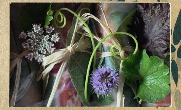 Une boîte de rouleaux de saison aux plantes sauvages de la boutique Tampopo