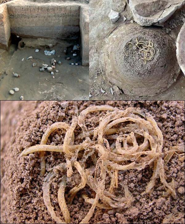 Des nouilles vieilles de 4000 ans
