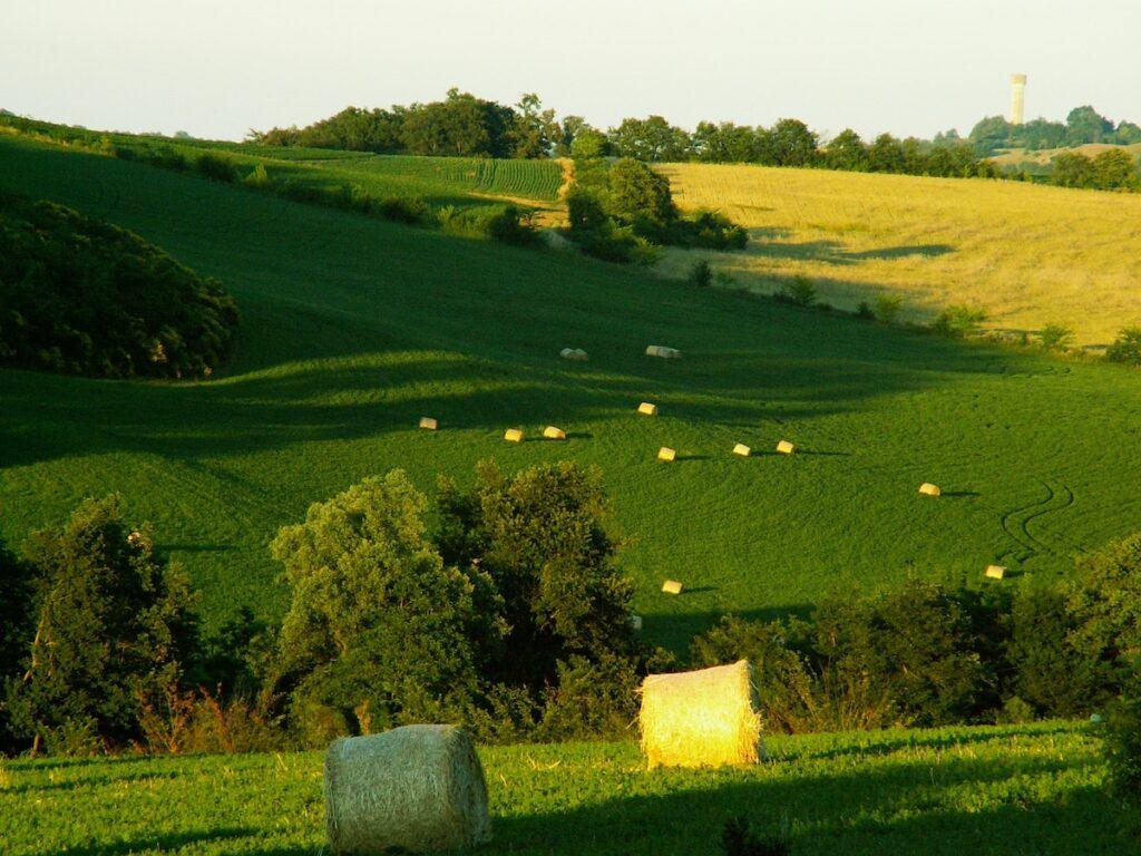 Les champs de Terres de Solan au printemps