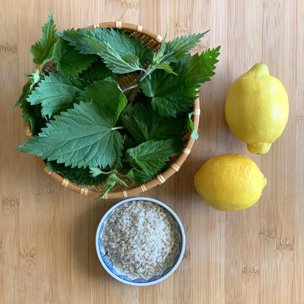 Tampopo : les ingrédients pour la fabrication du sel aux orties fraîches