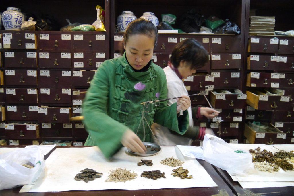 Tampopo, l'artisane : étude des ingrédients de la médecine traditionnelle chinoise